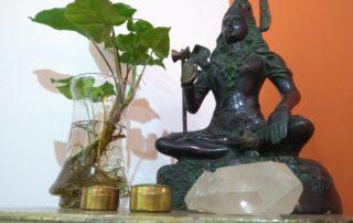 shiva-yogaprana-escola